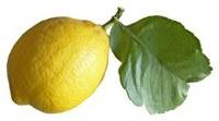citromlevellel